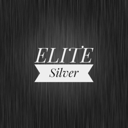 Audio Concierge ELITE Silver Audio Bundle